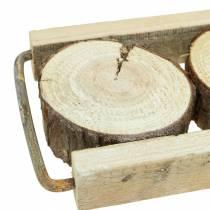 Taca dekoracyjna drewniana z plastrami drzew 34cm x 12cm H3cm