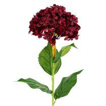 Hortensja sztuczna ciemnoczerwona 80cm 1szt.
