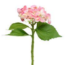 Hortensja różowa 33cm