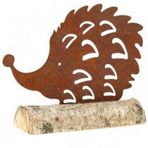 Jeż stal nierdzewna na drewnianej podstawie 26cm x 18cm