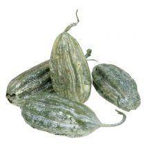 Loofah owocowa zielona 14cm 10szt