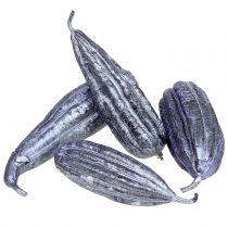 Luffa owocowa fioletowa 14cm - 20cm 10szt.
