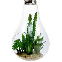 Kaktusy w szkle do zawieszenia 21cm