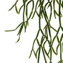 Kaktus Wieszak 115cm Zielony
