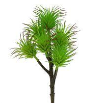 Gałęzie kaktusa 20cm jasnozielone 3szt