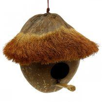 Kokos jako budka lęgowa, domek dla ptaków do powieszenia, dekoracja kokosowa Ø16cm L46cm