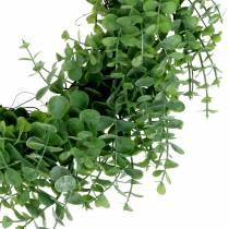 Wieniec Eukaliptusowy Zielony Ø36cm