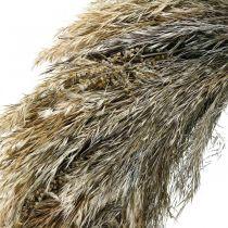 Deco wieniec suchy trawy i zboża Ø55cm wieniec suchy