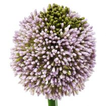 Sztuczne kwiaty Allium Purple Ø10cm L65cm