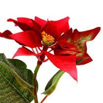 Sztuczne kwiaty poinsettia czerwony L73cm