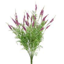 Krzew lawendy fioletowy 43cm