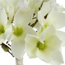 Magnolia wiązanka biała 40cm 5szt