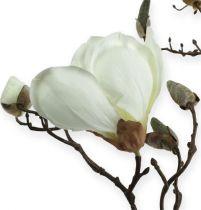 Gałąź magnolii biała 110 cm