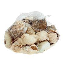 Dekoracja morska mix muszli naturalny 400g