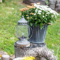 Metalowy Lampion, Lampa LED, Shabby Chic Ø16cm H33,5cm
