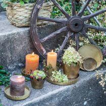 Metalowy talerz do dekoracji, dekoracji stołu, świecznik okrągły Złoty antyczny wygląd Ø7.5/10/12/15/18cm H2cm Zestaw 5 szt.