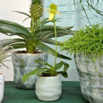 Mini doniczka, doniczka ceramiczna, lampion dekoracyjny, doniczka do roślin wzór fali Ø8cm 6szt.