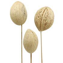 Mintolla piłka bielona 8cm - 10cm L46cm 6szt.