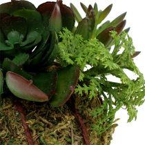 Kokedama Sztuczna zieleń Ø7cm