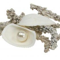 Shell Mix z Perłą i Drewnem Biały 200g