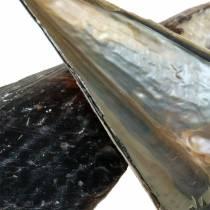 Muszle korkowe czarne 24 - 30cm 1kg