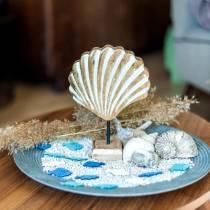 Muszla z podstawą drewnianą biała, natura 20×14cm Dekoracja morska do salonu