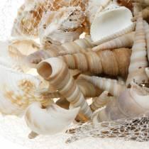 Mieszanka muszli i muszle ślimaków w siatce natura 400g