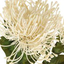 Poduszka Sztuczne Kwiaty Egzotyczne Leucospermum Kremowe 73cm 3szt.