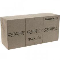 OASIS® NatureSource pianka korkowa 23cm×11cm×7cm 10szt.