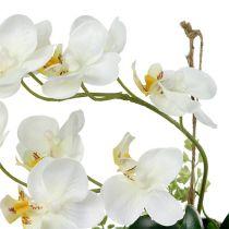 Orchidea Phalaenopsis do zawieszenia H26cm Kremowa
