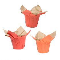 Doniczka papierowa Cachepot pomarańczowa/czerwona Ø8cm 12szt.