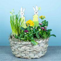Siana sadzarka, kosz dekoracyjny, kosz na rośliny, kosz na kwiaty owalny zestaw 3 szt.