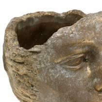 Głowa popiersie złota H24cm