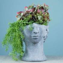 Betonowa głowica do sadzenia Bust Grey H23,5cm