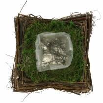 Planter Cushion Rattan, Moss 20cm x 20cm H8cm