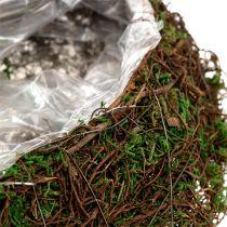 Planter Vine, Moss 45cm x 18cm H7cm