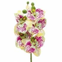 Orchidea sztuczna gałązka Phaelaenopsis zielono-różowa H49cm