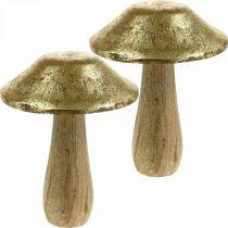 Grzyby Mango Wood Gold, Natural Deco Grzyby duże Ø12cm H15cm 2szt.