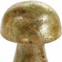 Grzybek Mango Wood Gold, Naturalny Grzybek Dekoracyjny Ø6cm H10cm 4szt.