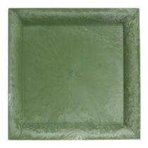 Talerz plastikowy zielony kwadratowy 19,5cm x 19,5cm