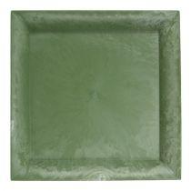 Talerz plastikowy zielony kwadratowy 26cm x 26cm