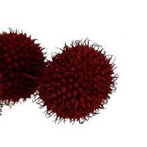 Owoce jaworu suszone ciemnoczerwone 250g