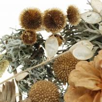 Mieszanka do dekoracji jesiennych jako zestaw rzemieślniczy Suszone bielone 150g