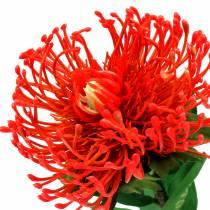 Protea Sztuczna Czerwona 73cm