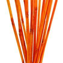Rattanowe łodygi pomarańczowe 100cm 20szt.