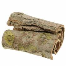Kora drzewna do craftingu Natura 13cm 1kg
