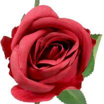Różowa czerwień 44cm 6szt