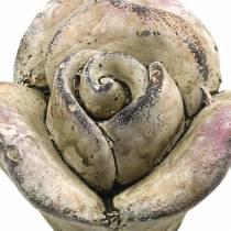 Concrete Rose Grey, Purple Ø7,7 H5,5cm 3szt.