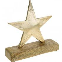 Gwiazda dekoracyjna, Metal Deco na drewnie mango, dekoracja adwentowa W15cm