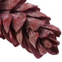 Strobus Szyszki Naturalne Deco Czerwone 15cm - 20cm 50szt.